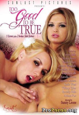 Слишком Хорошо, Чтобы Быть Правдой / Too Good To Be True (2011)