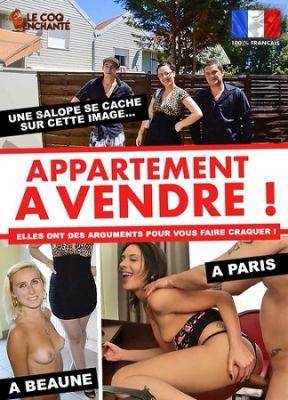 Сдаются апартаменты / Appartement à vendre (2017)