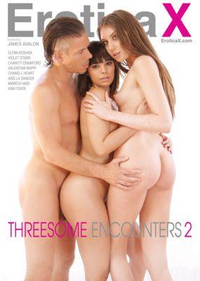 Встречи Втроем 2 / Threesome Encounters 2 (2017)
